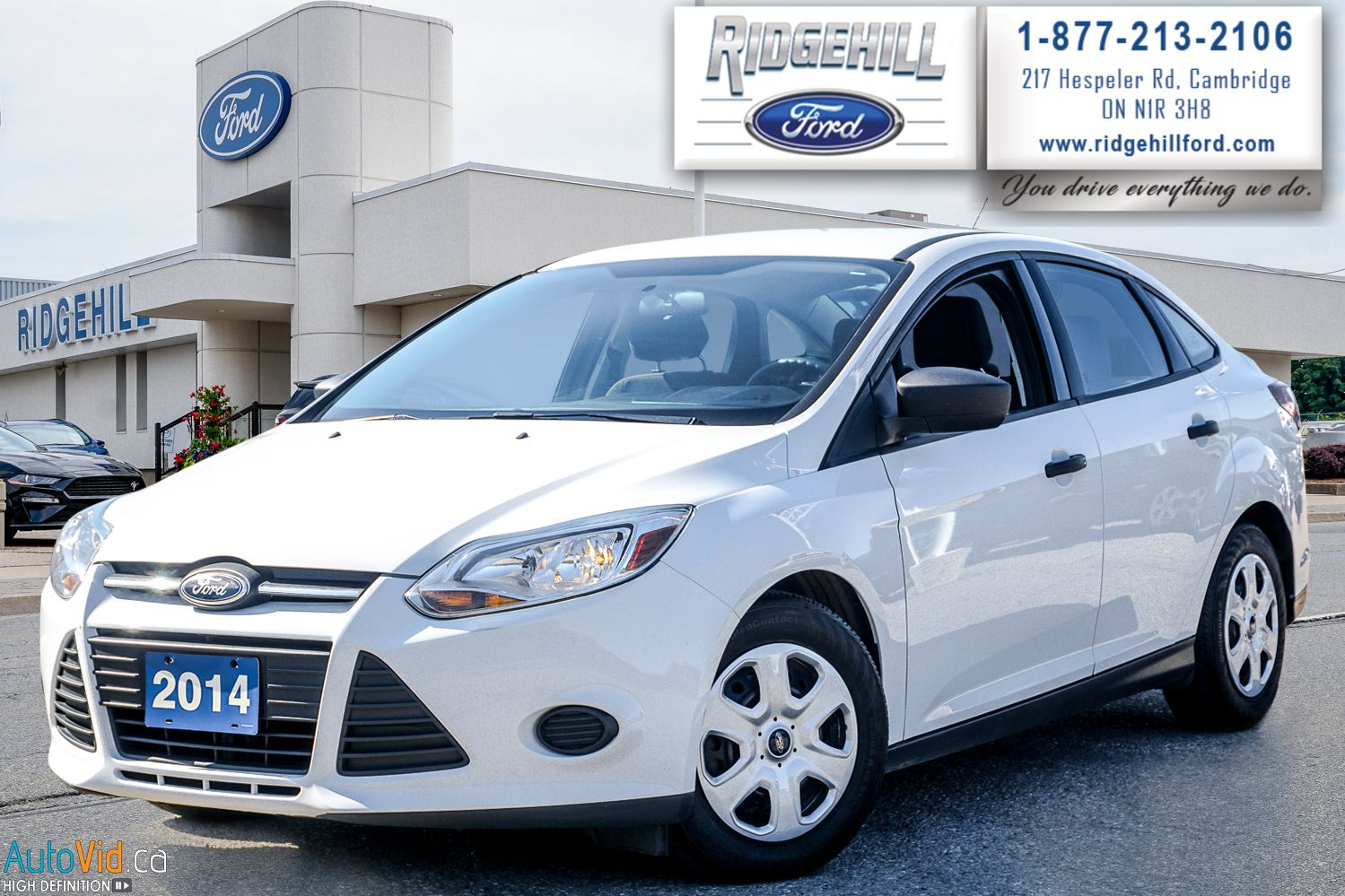 2014 Ford Focus Image