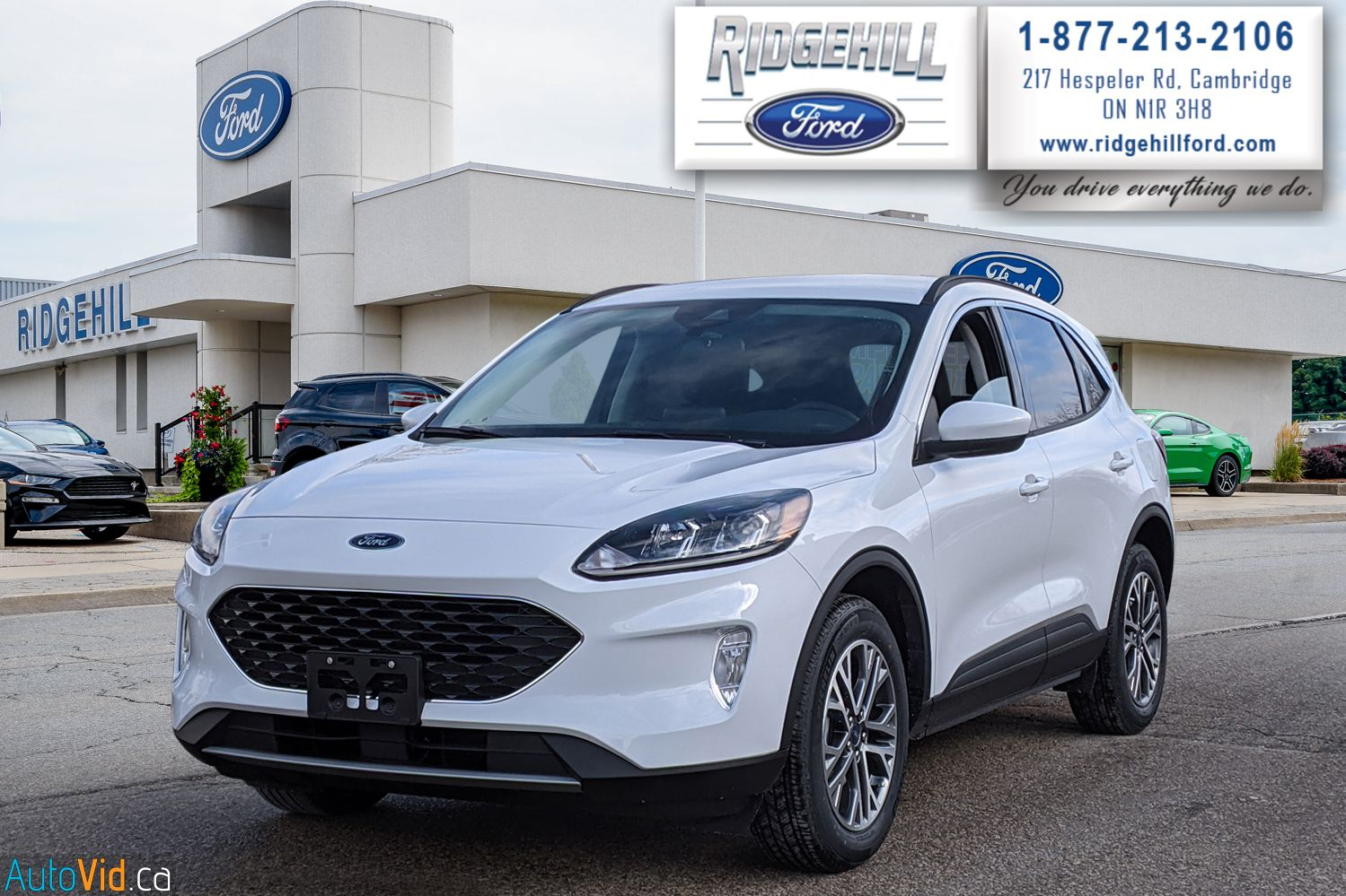 2021 Ford Escape Image