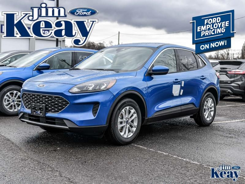 2020 Ford Escape Image