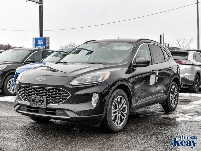 2020 Ford Escape Image